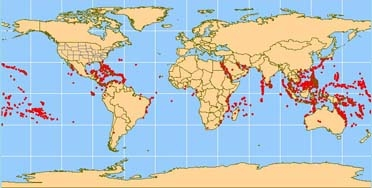 Fig03_Map of world corals_372.jpg
